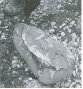 Septeria Stone